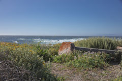 Bänk längs den 17 mil drevkustlinjen Kalifornien Arkivbilder