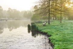 Bänk och damm, vår trädgårds- Stromovka i Prague, Tjeckien Royaltyfri Bild