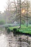 Bänk och sjö i morgonljuset, vår trädgårds- Stromovka Royaltyfria Bilder