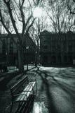 Bänk och träd, Barcelona arkivbild