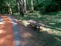 Bänk på motionsslinga i skog Arkivfoto
