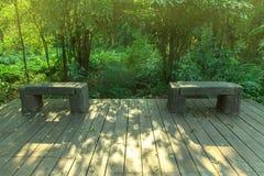 Bänk på trägolvet i skogen Royaltyfria Bilder