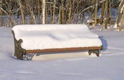 bänk räknad snowing vinter för parkplatssnow Arkivbild