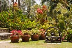 bänk tillverkat frodigt tropiskt trä för trädgårds- hand royaltyfri foto