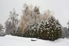 Bänk under snön Royaltyfri Foto