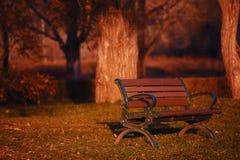 Bänk under solnedgång royaltyfri fotografi