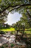 Bänk under träd i New Orleans LA Royaltyfri Bild