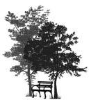 Bänk under träden royaltyfri fotografi