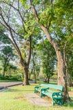 Bänk under trädet i trädgårdarna Arkivfoto