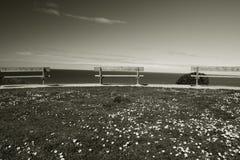 Bänkar i en linje på en klippa ovanför Atlantic Ocean i svartvitt, bidart, Frankrike arkivfoto