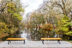 Bänkar i parkera vid floden fotografering för bildbyråer