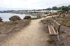Bänkar och att fotvandra, gå att köra och cykla på den härliga sjösidan skuggar arkivbild