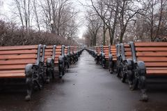 Bänkar som väntar på våren Royaltyfri Fotografi