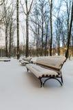 Bänkar täckt snö Fotografering för Bildbyråer