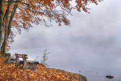 Bänke auf einem nebeligen See stützen im Herbstdekor unter Stockbild