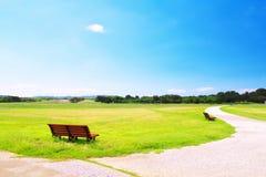 Bänke auf grünem Gras gegen Hintergrund des blauen Himmels Stockfoto