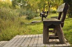Bänke ausgerichtet in einem Park Stockbilder