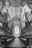 Bänke in der Kathedrale von Exeter, England Stockbilder