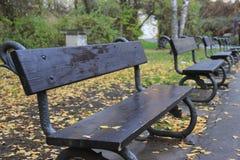 Bänke im Herbstpark Stockbild