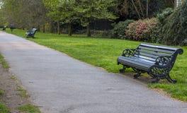 Bänke im Park entlang dem Weg gegen den Hintergrund von Bäumen und von Büschen Frische Landluft lizenzfreie stockbilder