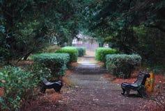 Bänke im Park von Adler Lizenzfreie Stockfotografie