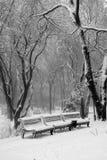 Bänke im Schnee Lizenzfreies Stockfoto