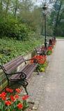 Bänke und Blume im Park Stockbild