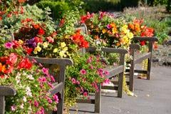 Bänke und Blumen Lizenzfreie Stockfotos