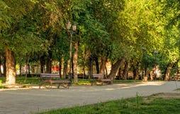 Bänke und Lampen morgens im Stadtpark Lizenzfreie Stockbilder