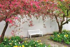 Bänken för vilar i vårträdgård Arkivbild