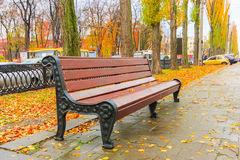 Bänken i den härliga hösten parkerar efter regn Royaltyfri Foto