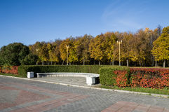 Bänken i hösten parkerar Arkivbild