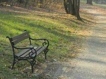 Bänken i parkerar nära skog royaltyfria foton