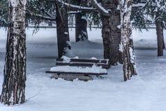 Bänken i stad parkerar täckt med stor snö på kall dag för vinter royaltyfri foto