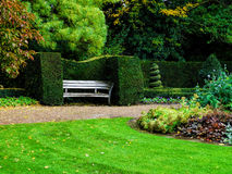 Bänken i utmärkt klippte buskar i regent parkerar, London för illustrationliggande för design hög upplösning för täppa för plan Royaltyfria Foton