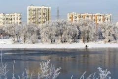 bänken räknade liggande nära stads- vinter för snowtrees Arkivfoton