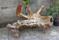 Bänken som göras av träd, rotar Trädet rotar som ett konstverk placera tr? Soffa som göras av naturligt material Stol från ett ga arkivbilder