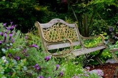 bänkträdgård Royaltyfri Foto
