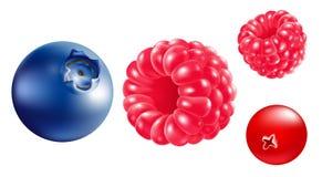 bär Ð-¡ förlorar-upp Hallon blåbär, jordgubbar hav för close för bakgrundsbärbuckthorn upp Royaltyfri Fotografi