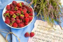 Bär av ett hallon, en frukost, en bra morgon, ett bra lynne, ett hallon och anmärkningar Royaltyfria Bilder