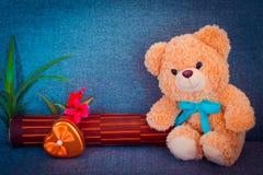 Bär, der auf Sofa sitzt Stockbild