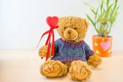 Bär, der ein rotes Herz hält Stockbilder