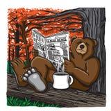 Bär, der eine Zeitung liest Stockfotografie
