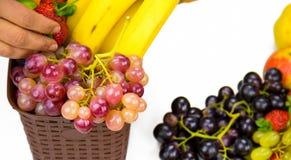Bär frukt allt tillsammans Arkivbilder