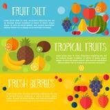 Bär frukt banervektorillustrationen Royaltyfri Foto