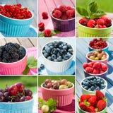 Bär frukt collage fotografering för bildbyråer