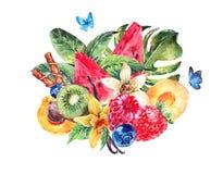 Bär frukt den exotiska menyn för vattenfärgen kortet royaltyfri illustrationer