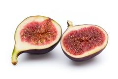 Bär frukt fikonträd som isoleras på vit bakgrund Arkivfoton