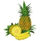 bär fruktt ananas royaltyfri illustrationer