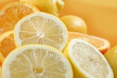 bär fruktt citronapelsiner Royaltyfri Bild